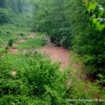 Höllbach Hochwasser 28.05.16 HAHL0516 037opt-kl