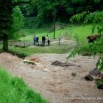 Höllbach Hochwasser 28.05.16 HAHL0516 063opt-kl
